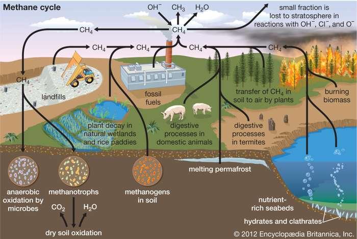 Name:  Methane-cycle-diagram.jpg Views: 92 Size:  47.5 KB
