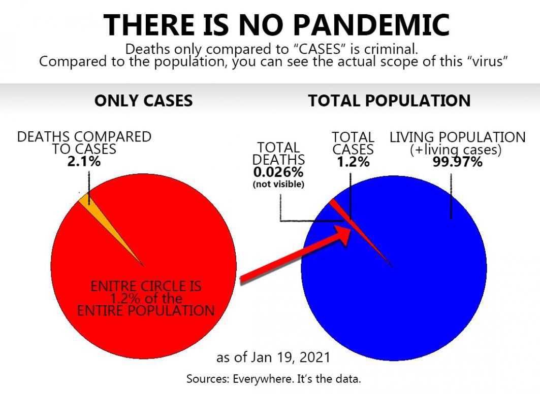 Name:  No Pandemic.jpg Views: 1056 Size:  84.5 KB