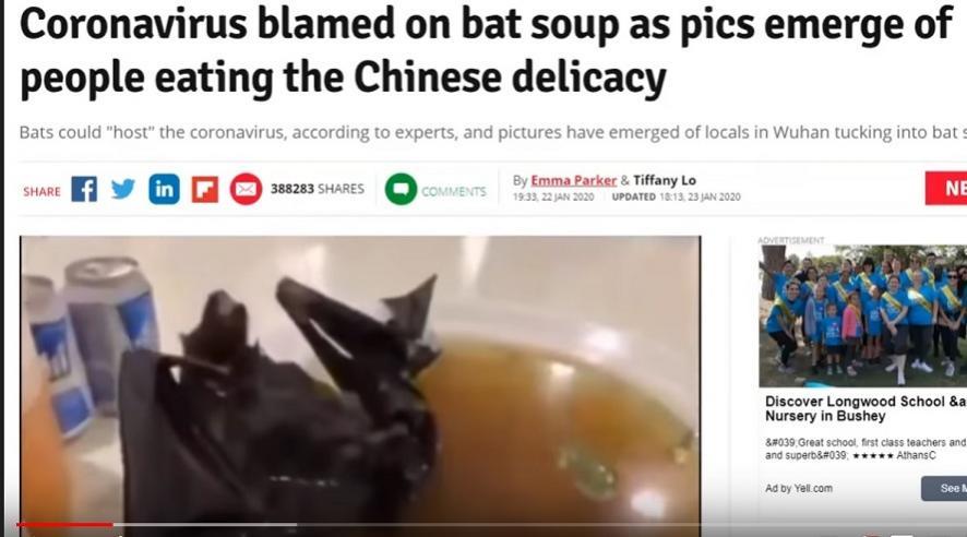 Name:  bat soup.jpg Views: 3882 Size:  56.7 KB