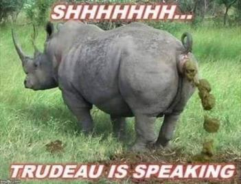 Name:  Trudo speaking.jpg Views: 662 Size:  20.0 KB