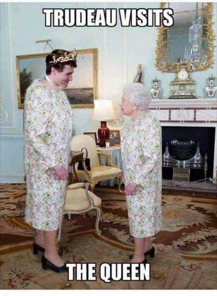 Name:  Trudeau visits the Queen.jpg